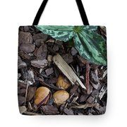 Three Nuts For A Trillium Tote Bag