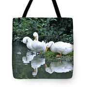 Three Out Of Four Tote Bag