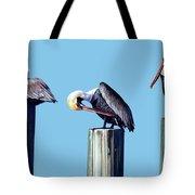 Three Pelicans Tote Bag