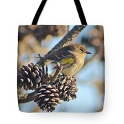 Three Pine Cones And A Little Bird Tote Bag