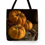 Three Pumpkins On A Bucket Tote Bag