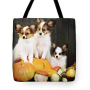 three puppy with pumpkin by Iuliia Malivanchuk Tote Bag