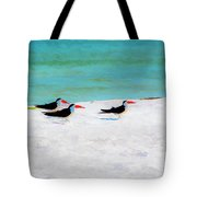Three Skimmers Tote Bag