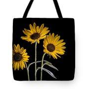 Three Sunflowers Light Painted On Black Tote Bag