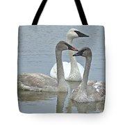 Three Swans Swimming Tote Bag