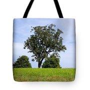 Three Tree Hill Tote Bag