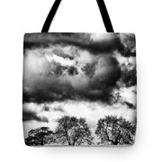 Three Tree Tops Landscape Tote Bag