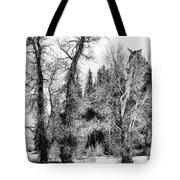 Three Trees Bw Tote Bag