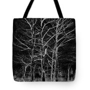 Three Trees In Black And White Tote Bag