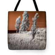Three Trees  In Infrared On Top Of A Grassy Dune Tote Bag