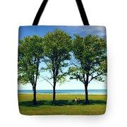 Three Trees Lake Shore Tote Bag