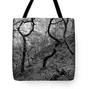 Three Trees Tote Bag