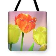 Three Tulips. Tote Bag