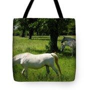 Three White Lipizzan Horses Grazing In A Field At The Lipica Stu Tote Bag
