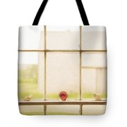 Three Window Shells Tote Bag