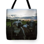 Three Wisconsin Maidens Tote Bag