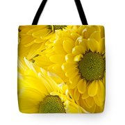 Three Yellow Daisies  Tote Bag by Garry Gay