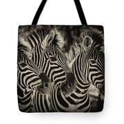 Three Zebra Tote Bag