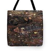Threefin Blennie Like Fish On Log Tote Bag
