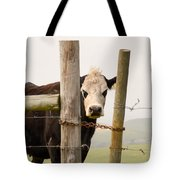 Threshold Guardian Tote Bag