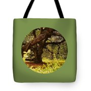 Through The Ages Tote Bag