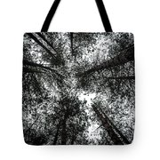 Through The Canopy Tote Bag by Nick Bywater
