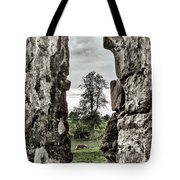 Through The Castle Window Tote Bag