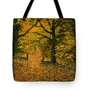 Through The Fallen Leaves Tote Bag