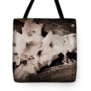 Through The Fence Tote Bag by Diane Reed