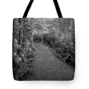 Through The Forest Canopy Black And White Tote Bag