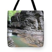 Through The Gorge Tote Bag