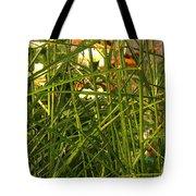 Through The Grass Curtain Tote Bag