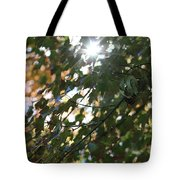 Through The Leaves 2 Tote Bag