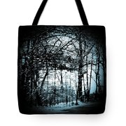 Through The Lens-blue Tote Bag