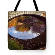 Through The Looking Glass Tote Bag by Joann Vitali