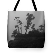 Through The Mist Tote Bag
