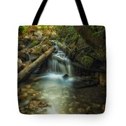 Through The Mossy Logs Tote Bag