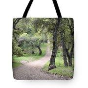 Through The Oaks Tote Bag