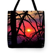 Through The Pines Tote Bag