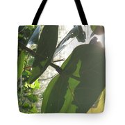 Through The Sea Grape Leaves Tote Bag