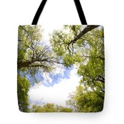 Through The Tree Tops Tote Bag