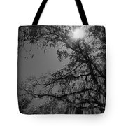 Through The Trees Tote Bag