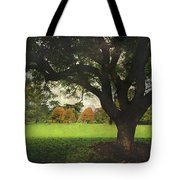 Throw Your Arms Around The World Tote Bag