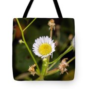 Thumbnail Sized Pretties Tote Bag