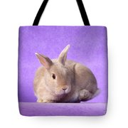 Thump Gorgeous Dwarf Rabbit Stamps His Foot  Tote Bag