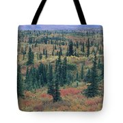 Tiaga Fall Colors, Tundra And Spruce Tote Bag