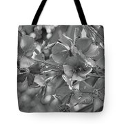 Tibouchina In Black And White Tote Bag