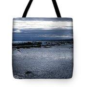 Tidal Secrets Haida Gwaii Bc Tote Bag