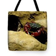 Tide Pool Crab 1 Tote Bag