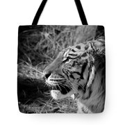 Tiger 2 Bw Tote Bag